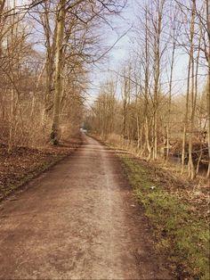 Bestes Wetter zum Joggen - nicht zu warm, aber auch nicht zu kalt. Entdecke mehr auf http://abnehmen30.de