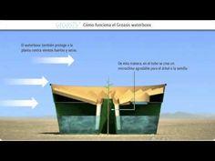 (Con música) ¿Cómo funciona el Groasis waterboxx contra la desertificación? - YouTube