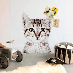 Carta da parati magnetica piccola Gatto