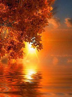 Imágenes de otoño | Fondos de pantalla y mucho más