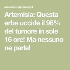 Artemisia: Questa erba uccide il 98% del tumore in sole 16 ore! Ma nessuno ne parla!
