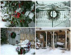 let it snow... great pics