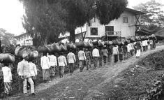 Para pemetik teh di sekitar gunung Malabar, Pangalengan (selatan Bandung) menuju pabrik. Juli 1935 Dutch East Indies, Old Pictures, Java, Dolores Park, Paris, City, Travel, Outdoor, Coffee