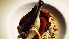 Morcillo estofado. #morcillo #shank #beef #stew #hautecuisine  #instafood #instagood #gastronomy #foodlovers #foodstyling #foodporn #foodphotography #cheflife #chef #chefslife #tasted #foodlovers #foodstyling #foodporn #foodgasm #foodphotography #gastronomie puedes seguirnos en Http://Koketo.es Chef Koketo #koketo ♫ Roisin Murphy