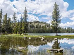 Caribou Wilderness of Northern California.