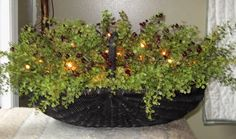 Pepper Grass & Berries Basket with lights