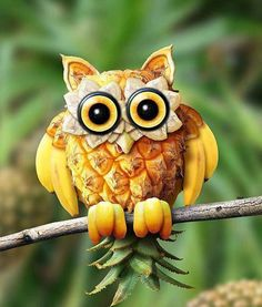 Owl Fruit and Vegetable Carving - Food Carving Ideas Photo Fruit, Fruit Picture, Fruit Sculptures, Food Sculpture, L'art Du Fruit, Fruit Art, Fruit Salad, Banana Fruit, Fresh Fruit