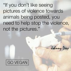 ... help stop the violence not the pictures, go #vegan