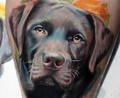 Labrador Tattoo - Tattoo Collections