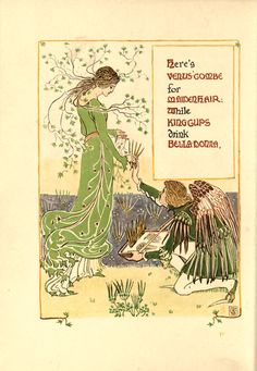 Venus Combe, Maidenhair, King Cups and Bella Donna Flowers' An illustration by Walter Crane from 'Floral Fantasy - In an Old English Garden'. Originally Published in 1899. http://www.amazon.com/gp/product/1443797278/ref=as_li_tl?ie=UTF8&camp=1789&creative=9325&creativeASIN=1443797278&linkCode=as2&tag=reaboo09-20&linkId=WBWSFFRXZXJP3FBT