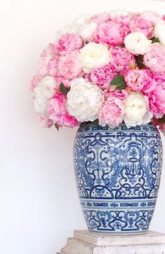 Peonies in blue and white vase.