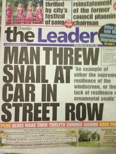 funny news, not so important news stories of the week, funny news stories, best of wtf news Funny News Headlines, Newspaper Headlines, Examples Of Resilience, Funny News Stories, Netflix Quotes, Pop Goes The Weasel, You Had One Job, Weird News, Fake News