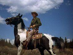 Little Joe & Cochise... that horse is a work of art
