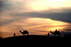 An evening in the desert, via flickr