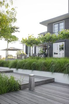 Buytengewoon – Villatuin Almere, house - All About Balcony Modern Landscaping, Backyard Landscaping, Outside Living, Outdoor Living, Small Gardens, Outdoor Gardens, Contemporary Garden, Garden Landscape Design, Garden Styles