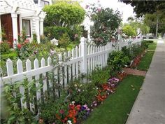 Bright colors mingle with this classic white picket fence. This pattern of pickets would make a great addition to a Victorian or country garden. More country gardening ideas here: http://www.landscapingnetwork.com/garden-styles/country/