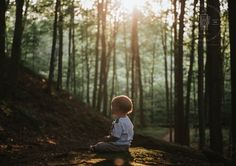 LITTLE EXPLORER   Family Portrait session in the forest with 1 year old boy and his parents as the sun sets. Photographed by Kevin Vyse Photography in London Ontario, Canada 2017.