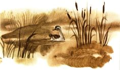 "Hans Christian Andersen.  ""O patinho feio"".  Ilustrações V. Chinёnovoy."