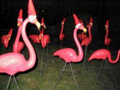 nativity set pink flamingo - Google Search