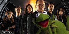 Kermit The Frog Wants To Join Agents Of S.H.I.E.L.D. http://comicbook.com/2015/08/05/kermit-the-frog-wants-to-join-agents-of-s-h-i-e-l-d-/?utm_term=0_7a2d10cb6e-a40a810d78-269460257&utm_content=buffer31d16&utm_medium=social&utm_source=pinterest.com&utm_campaign=buffer