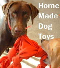 33 Home Made dog toys made with inexpensive items you can find around the house!  So very easy!
