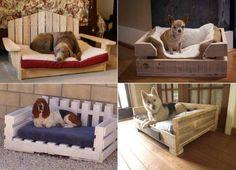 Dog Bed - 16 idées de paniers pour chiens et chats. Découvrez des idées originales et des tutoriels de paniers pour chiens et chats.