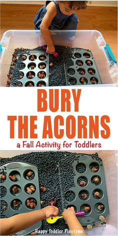 Bury The Acorns: An Easy Toddler Activity - HAPPY TODDLER PLAYTIME Create this super fun and easy toddler Fall activity using acorns. It is an amazing sensory play activity for little hands! Fall Activities For Toddlers, Fall Preschool, Toddler Learning Activities, Toddler Preschool, Toddler Crafts, Preschool Activities, Family Activities, Motor Activities, Fall Sensory Bin