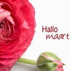 Handmade by Het Voske: Hallo Maart