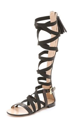 Knee-High Gladiator Sandals | POPSUGAR Fashion
