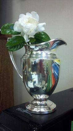 Gardenia in silver pitcher...