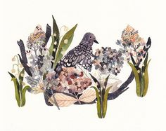 Mourning Dove, Hydrangeas, and Snow Drops - Archival Print by unitedthread