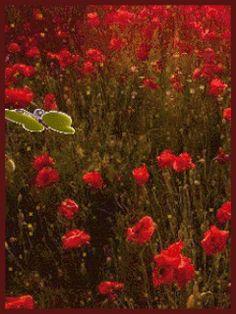 GIFS HERMOSOS: FLRES Y MARIPOSAS ENCONTRADAS EN LA WEB Gifs, Heart Gif, Boarders, Beautiful Flowers, Butterflies, Glitter, Thoughts, Friends, Colors
