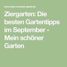 Ziergarten: Die besten Gartentipps im September - Mein schöner Garten