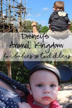 Disney's Animal Kingdom for Babies and Toddlers, What To Do With Kids at Animal Kingdom, Babies at Disney, Babies at Animal Kingdom, Walt Disney World With Babies and Toddlers