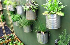 repurpose food cans to herb garden..be sure to coat cans first with clear coat or they will rust and run down your fence