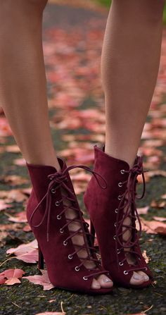 Burgundy lace up booties