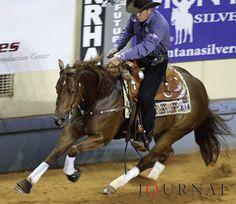 Spook Off Sparks -Quarter Horse-Reining horse champion