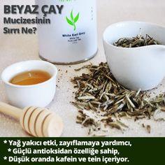 Beyaz çay mucizesinin sırrı...