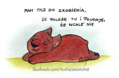 Wombat, Winnie The Pooh, Nick Vujicic, Disney Characters, Fictional Characters, Humor, Comics, Funny, Quotes
