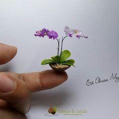 Phalaenopais orchid - handmade- cold porcelain. 1:12 scale. Unusual Flowers, Pretty Flowers, Mini Plantas, Mini Orquideas, Orquideas Cymbidium, Diy Doll Miniatures, Miniature Orchids, Iphone 6 Plus Wallpaper, Mini Bonsai
