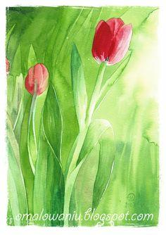 kwiaty na wiosnę