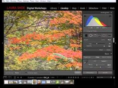 Scott Kelby Lightroom 5 Pdf Italiano