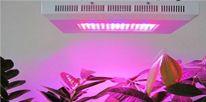 Indoor Grow Lights, Best Led Grow Lights, Appliance, Indoor Plants, Lens, Chips, Actors, Gallery, Products