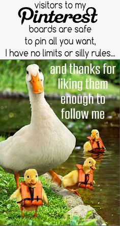 visitors to my Pinterest boards are safe to pin all you want, I have no limits or silly rules... and thanks for liking them enough to follow me <3 Tam <3
