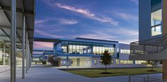 Cedar Ridge High School | Perkins + Will