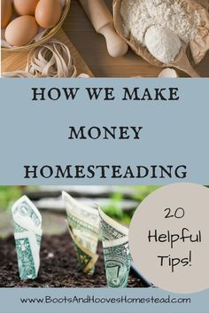 How We Make Money Homesteading. 20 helpful tips and ideas. Homesteading money. Frugal living tips. Earning income on the homestead.