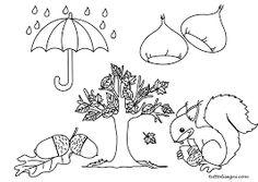 Risultati immagini per animali in letargo in autunno