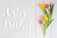 Das große Hoppeln - Céline Claire Designs #blog #blogpost #easter #easterfreebie #freebie #freeprintable #easterprintabe #diy #diyfreebie Bathroom Hooks, Blog, Diy, Garlands, Craft Tutorials, Nice Asses, Bricolage, Blogging, Do It Yourself