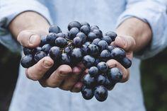 Zdrowe odżywanie nie jest chwilową modą, ale coraz silniejszym trendem – wynika z badania przeprowadzonego przez Ośrodek Ewaluacji. Polacy chcą jeść zdrowo i odpowiedzialnie, dlatego coraz częściej wybierają żywność nieprzetworzoną, bez konserwantów i chemicznych dodatków.