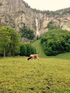 Grindenwald, Switzerland